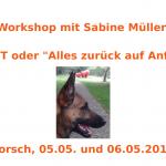 Reset Workshop mit Sabine Müller !
